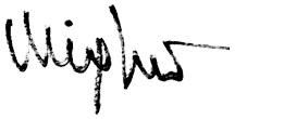 Firma Miguel Vergara