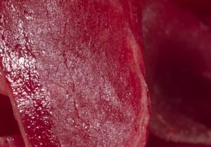 Cecina de León - Guía Repsol de alimentos y bebidas