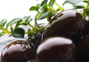 Aceite de oliva virgen extra Picudo - Guía Repsol de alimentos y bebidas