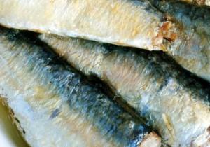 Sardinillas en aceite de oliva - Guía Repsol de alimentos y bebidas