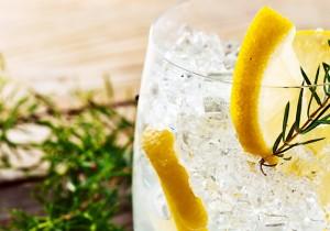 Ginebra - Guía Repsol de alimentos y bebidas