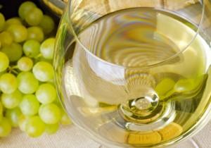 Vinos blancos jóvenes aromáticos - Guía Repsol de alimentos y bebidas