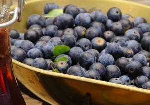 Ruta patxarán navarro - Guía Repsol de alimentos y bebidas
