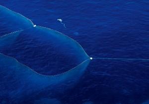 Ruta mojama de atún rojo - Guía Repsol de alimentos y bebidas