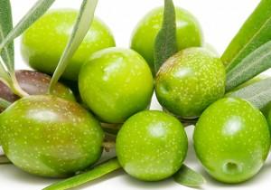 Aceitunas Ocal
